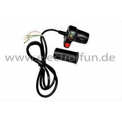 Gasdrehgriff Elektro Scooter 1600 W