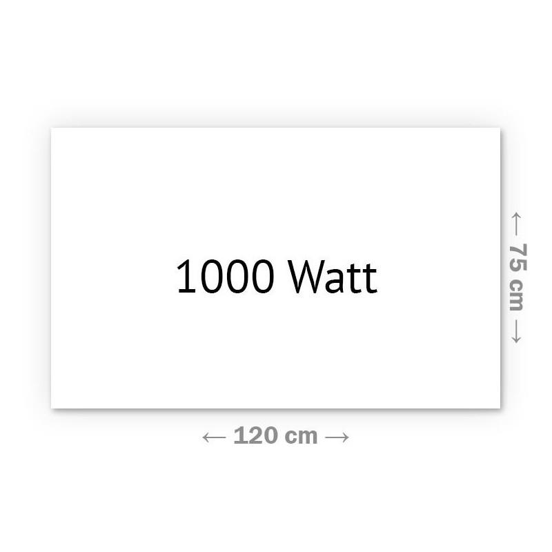 Infrarotheizung Klassik 1000 Watt 75 x 120 cm