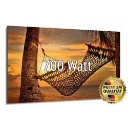 Infrarotheizung Glasbild entspiegelt 700 Watt rahmenlos 60 x 120 cm