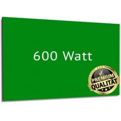 Infrarotheizung Glas RAL 600 Watt mit Rahmen 60 x 110 cm