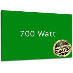 Infrarotheizung Glas RAL 700 Watt mit Rahmen 60 x 120 cm