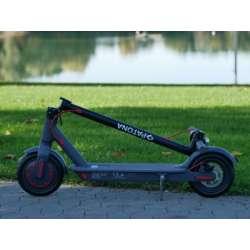 Elektro Scooter 7781Grau